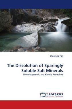The Dissolution of Sparingly Soluble Salt Minerals - Fan, Chunfang