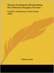 Montan-Geologische Beschreibung Des Pribramer Bergbau-Terrains: Und Der Verhaltnisse In Der Grube (1892) - Wilhelm Gobl