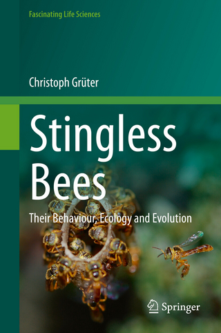Stingless Bees - Christoph Grüter