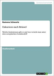 Exkursion nach Brüssel: Welche Institutionen gibt es und was versteht man unter dem europäischen Sozialmodell?