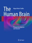 Marín-Padilla, Miguel: The Human Brain