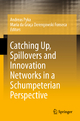 Catching Up, Spillovers and Innovation Networks in a Schumpeterian Perspective - Andreas Pyka; Maria da Graça Derengowski Fonseca
