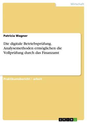 Die digitale Betriebsprüfung. Analysemethoden ermöglichen die Vollprüfung durch das Finanzamt - Patricia Wagner