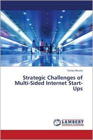 Strategic Challenges of Multi-Sided Internet Start-Ups