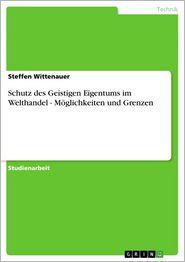 Schutz des Geistigen Eigentums im Welthandel - Möglichkeiten und Grenzen - Steffen Wittenauer