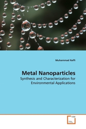 Metal Nanoparticles - Synthesis and Characterization for Environmental Applications - Raffi, Muhammad