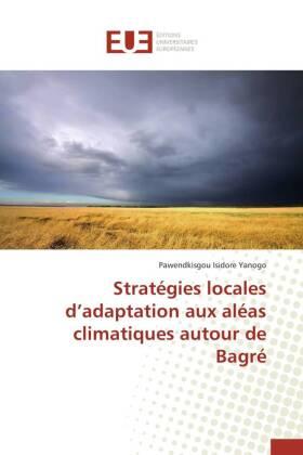 Stratégies locales d'adaptation aux aléas climatiques autour de Bagré - Yanogo, Pawendkisgou Isidore