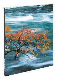 Feng Shui: Blank Book small,