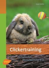 Clickertraining - Für Kaninchen, Meerschweinchen & Co. - Isabel Müller