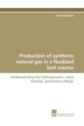 Production of synthetic natural gas in a fluidized bed reactor - Understanding the hydrodynamic, mass transfer, and kinetic effects - Kopyscinski, Jan