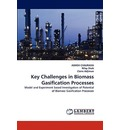 Key Challenges in Biomass Gasification Processes - ASHISH CHAURASIA