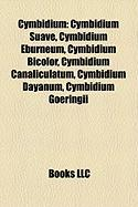 Cymbidium: Cymbidium Suave, Cymbidium Eburneum, Cymbidium Bicolor, Cymbidium Canaliculatum, Cymbidium Dayanum, Cymbidium Goeringi