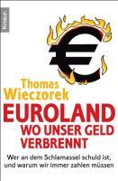 Euroland: Wo unser Geld verbrennt: Wer an dem Schlamassel schuld ist, und warum wir immer zahlen müssen