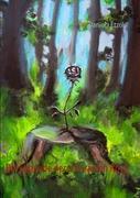 Die Legende der schwarzen Rose - Etzold, Daniela