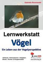 Lernwerkstatt Vögel (GS): Von der Amsel bis zum Zaunkönig: Ein Leben aus der Vogelperspektive